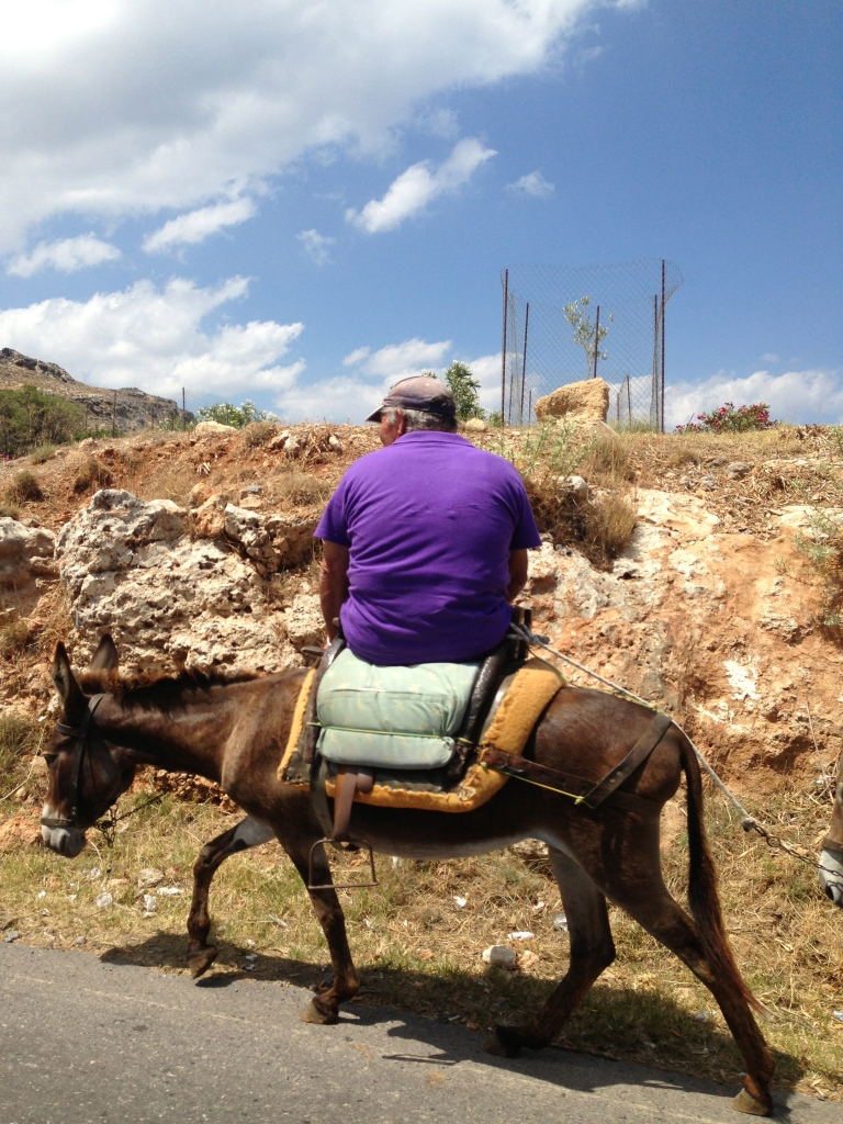 Donkey rides at the Acropolis. POOR donkey!